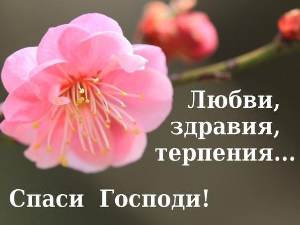 Поздравление православного человека с днем рождения